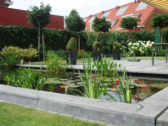 Verhoogde vijver vijvers en waterpartijen vijver tuin for Tuin en vijver