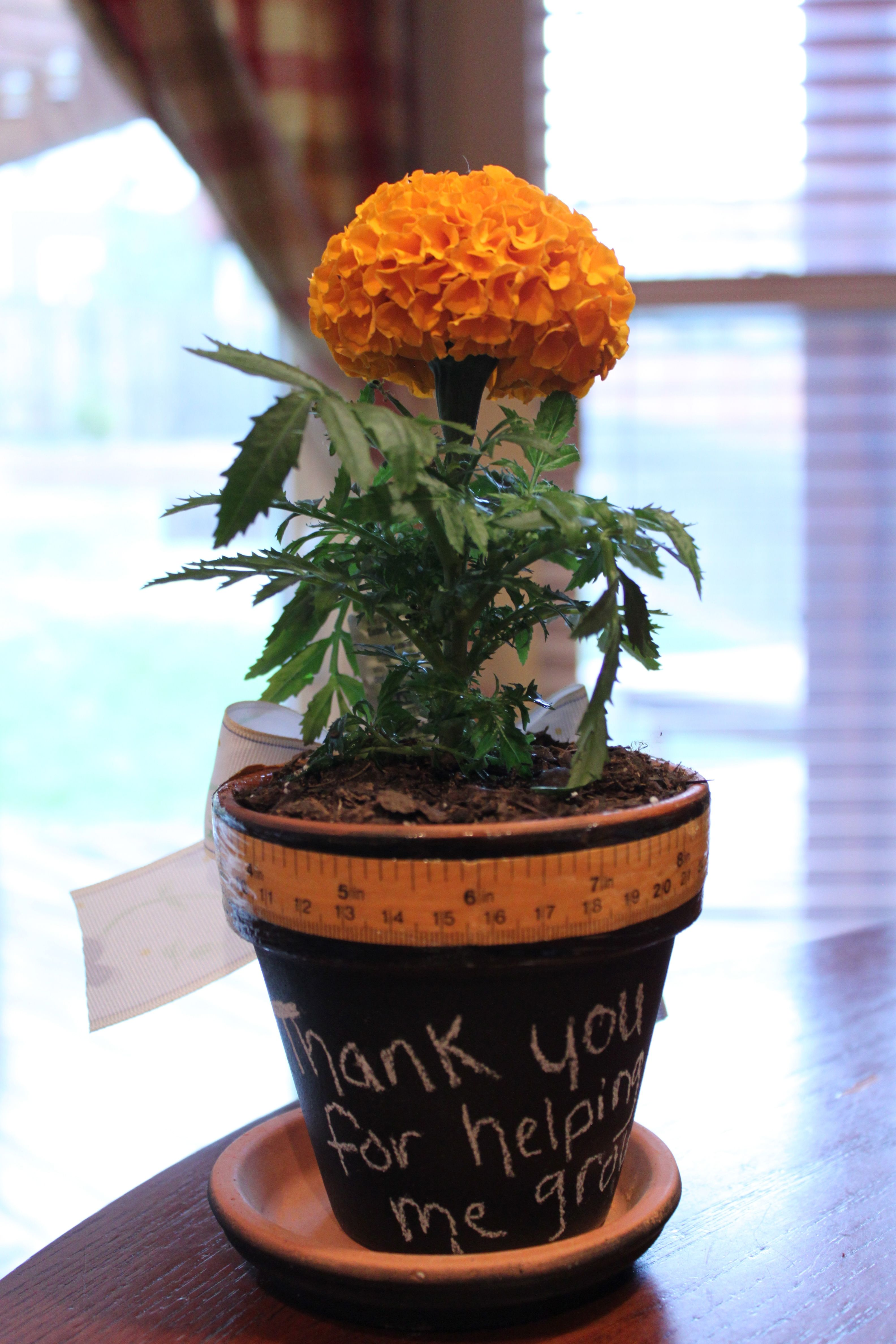 "Thank you for helping me ""grow!"" Spray pot with chalkboard"