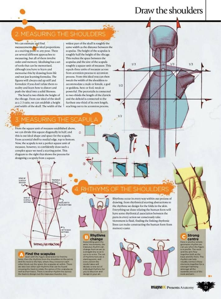 """How To Draw and Paint Anatomy"""" by Ron Lemen* • Blog/Website 