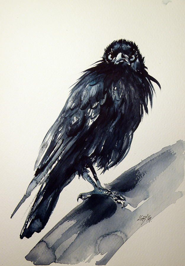 Crow Painting - Crow by Kovacs Anna Brigitta