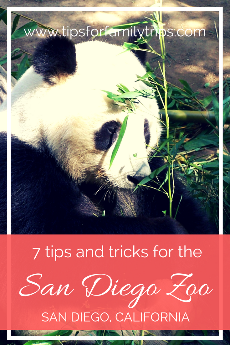 7 tips and tricks for visiting the world famous San Diego Zoo   tipsforfamilytrips.com   Southern California   family vacation   spring break   summer vacation   travel
