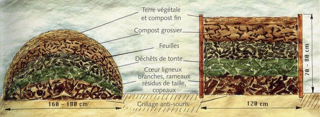 Butte et lasagnes permaculture pinterest for Culture sur butte permaculture