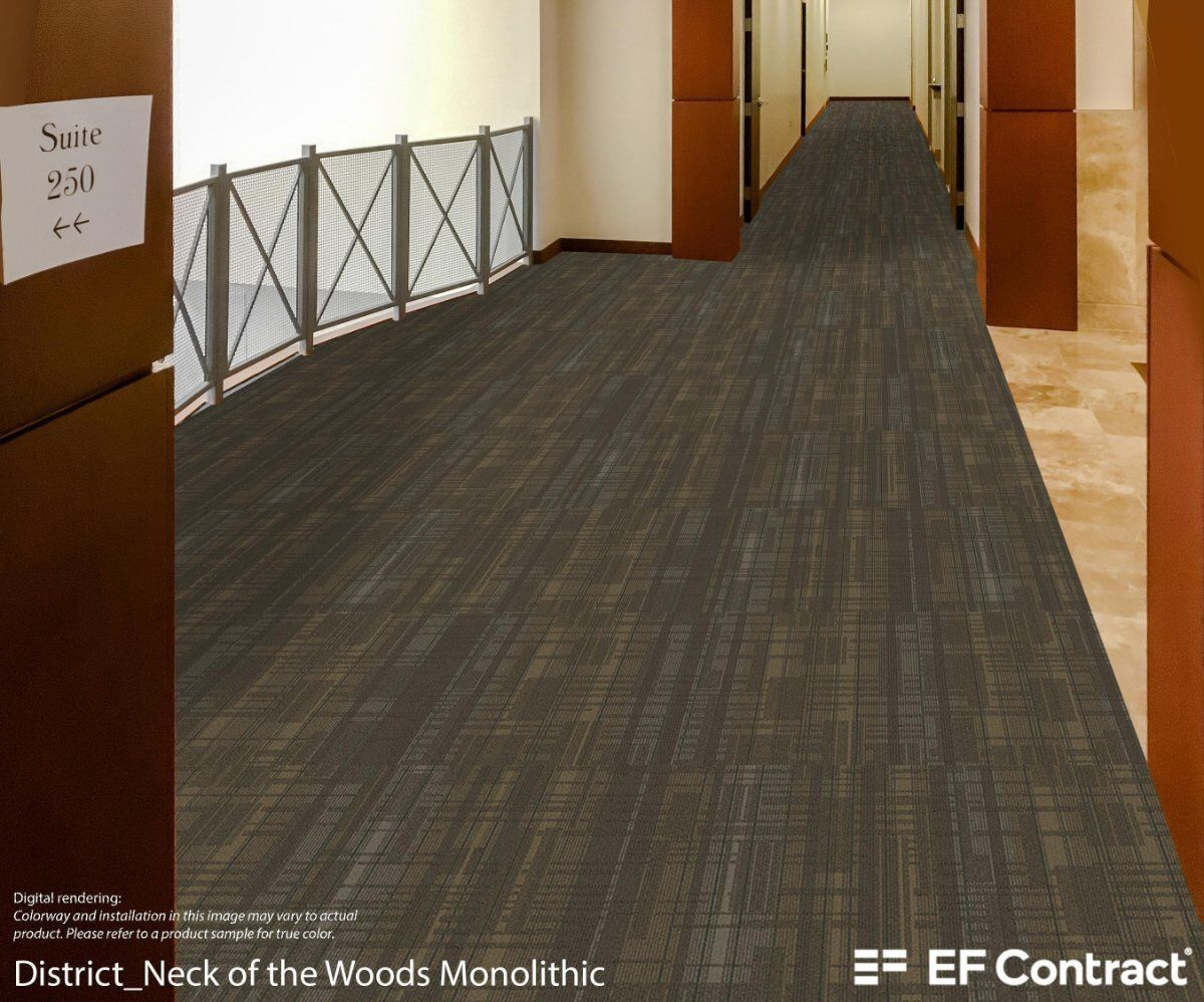 Ef Contract S Room Rendering Of District Carpet Tile Color Neck Of The Woods 24 X 24 In Monolithic Commercial Carpet Tiles Commercial Carpet Carpet Tiles