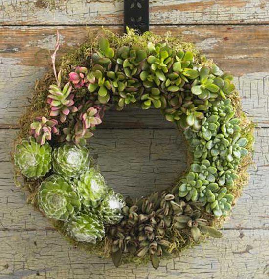 Summer Ready Outdoor Decor Succulent Wreath Outdoor Living Decorating D Living Wreath Succulent Wreath Succulents