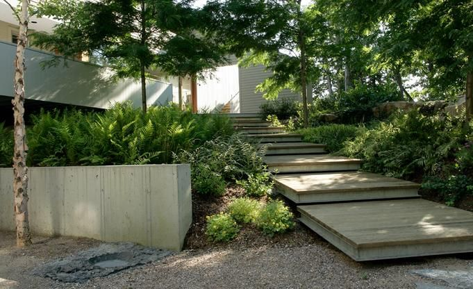 Contemporary Landscape Ideas Alluring Modern Garden Landscape Design Native Planting Concept Design Ideas