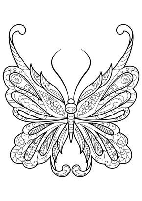 Detailed Butterfly Coloring Page Butterfly Coloring Page Mandala Coloring Pages Coloring Pages