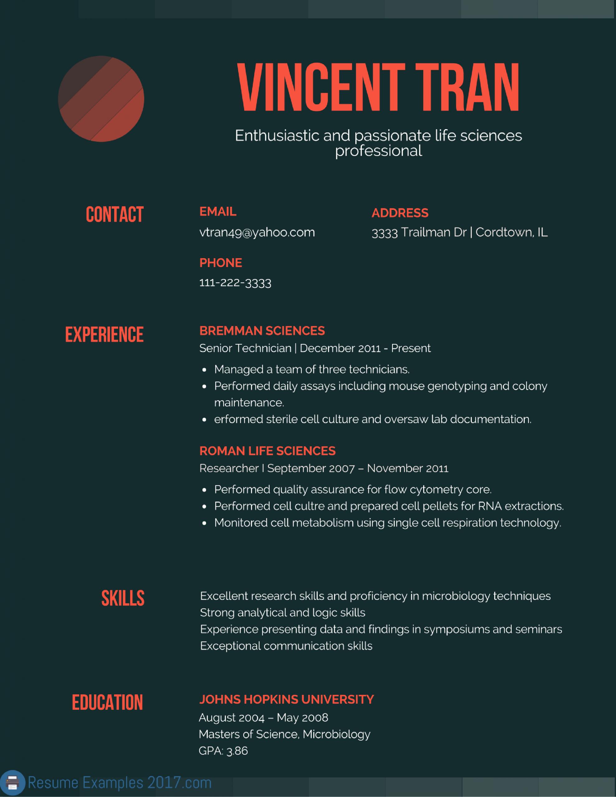 Headline Examples For Resume Beautiful Resume Headline Examples 2019 In 2020 Resume Examples Resume Simple Resume Template