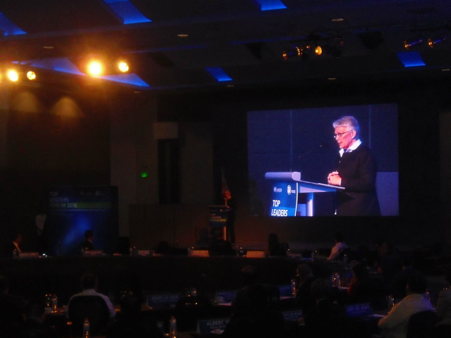 Top Leaders Review Disaster Risk Reduction Strategies and