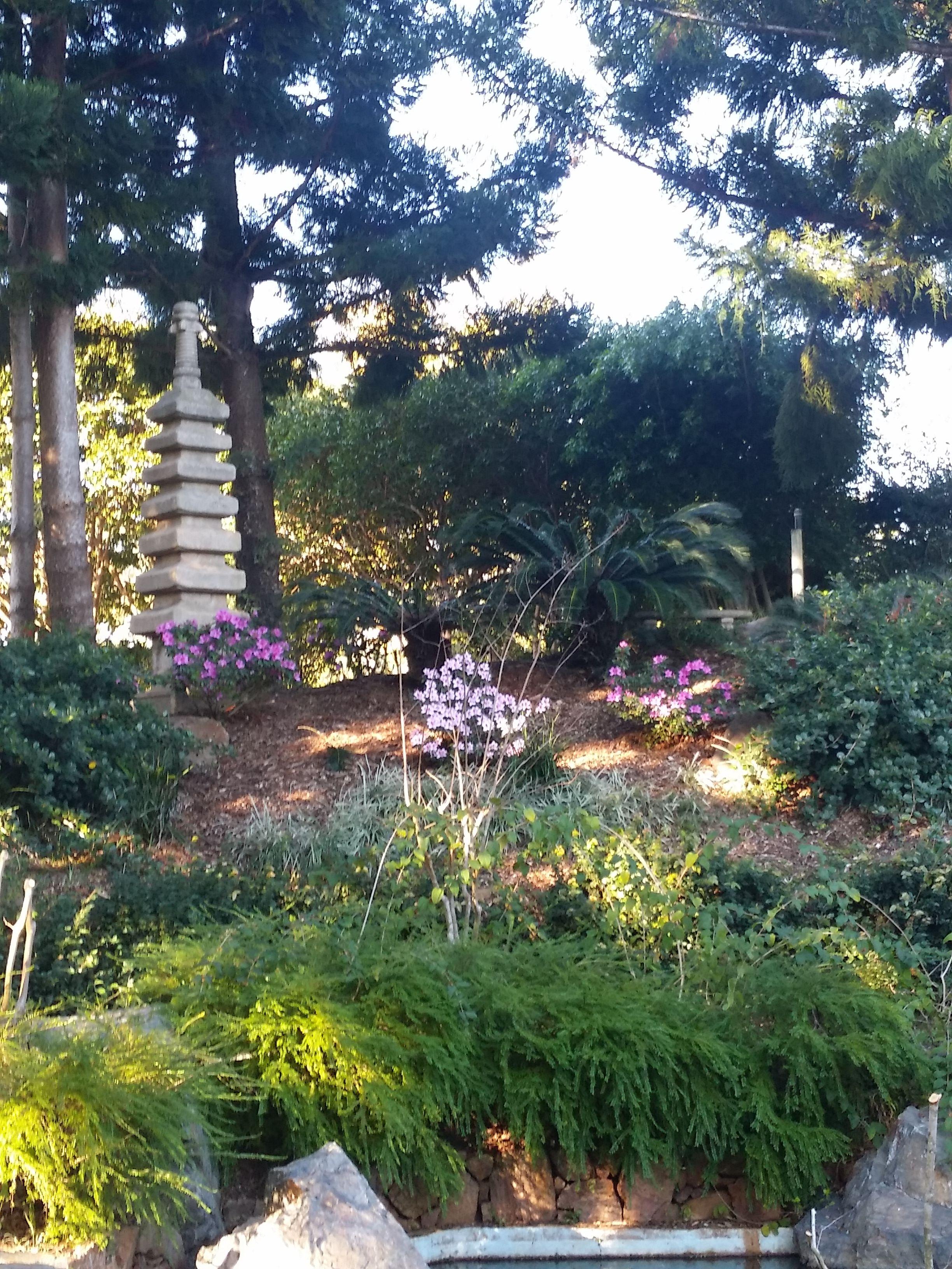 Japanese Gardens, Botanical Gardens, Rockhampton ...