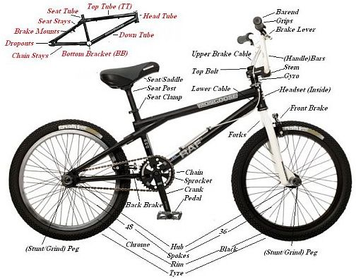 Bmx Bike Parts The Beginners Guide To Bmx Bike Parts Shared From Http Hikebike Net Bmx Bike Parts Bmx Bikes Bike Parts