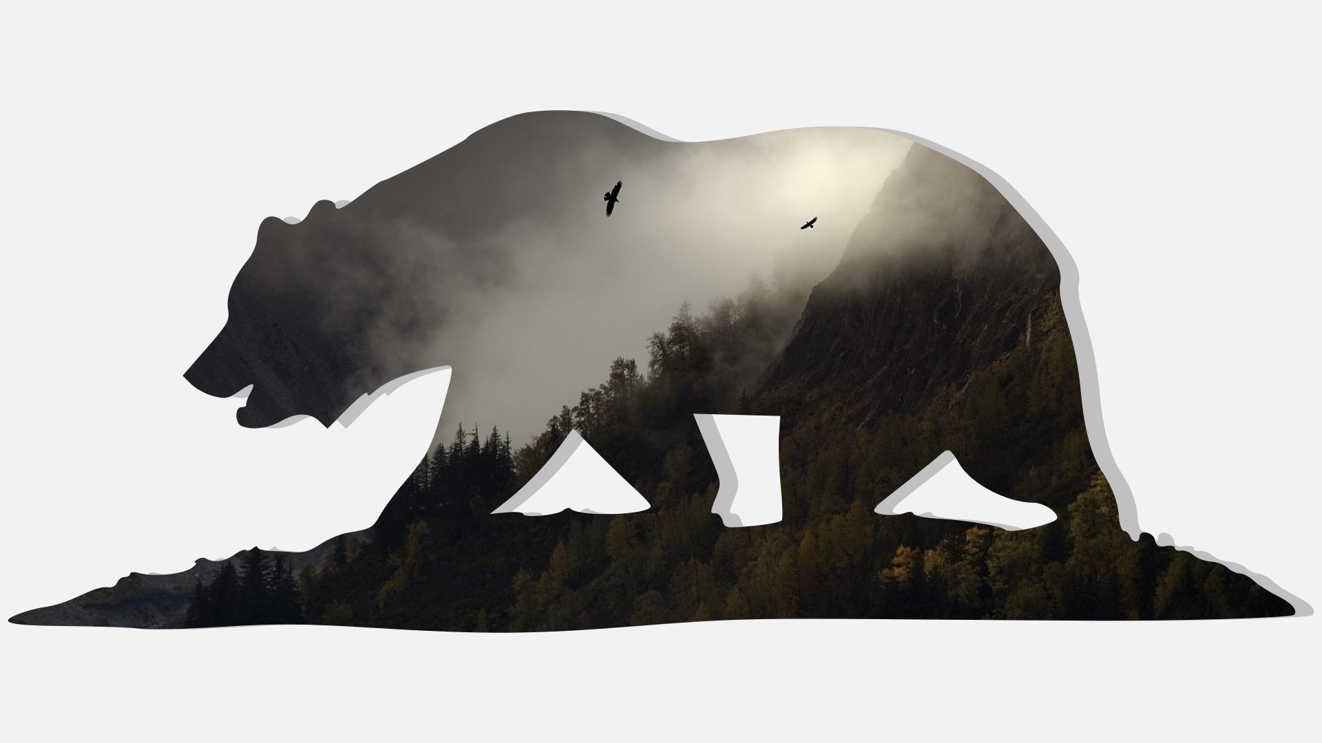 California Bear Wallpaper 1920x1080 Pixels