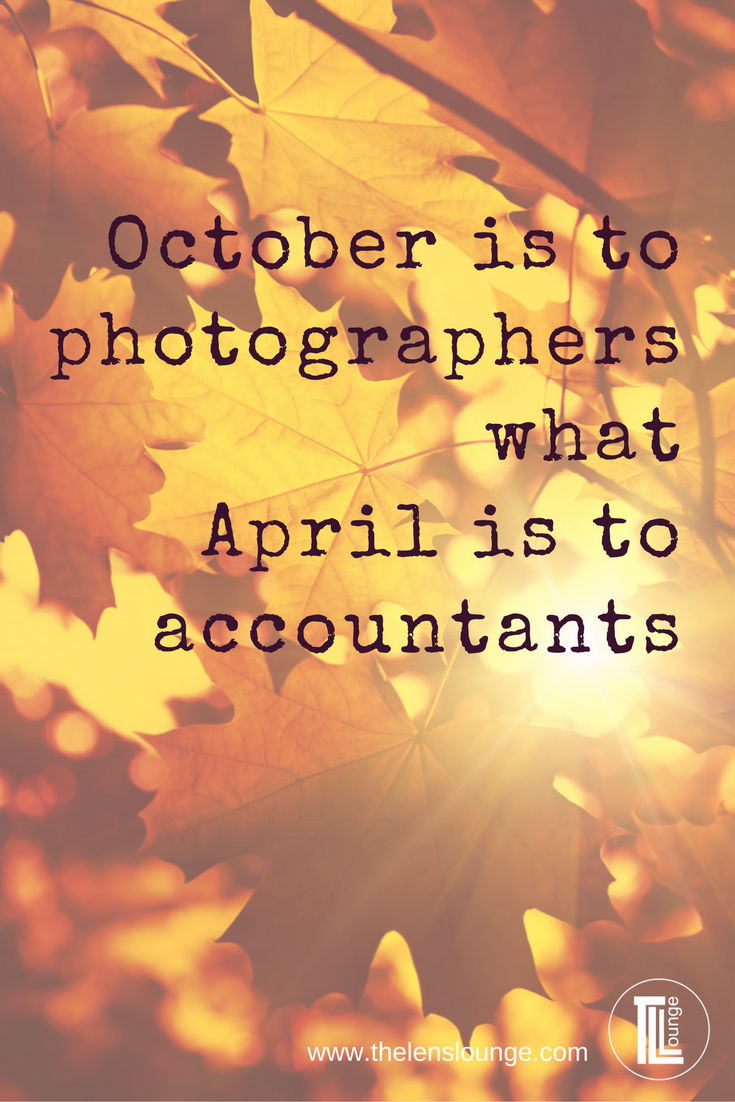 Tutorials Photography Quotes Funny Quotes About Photography Photographer Quotes