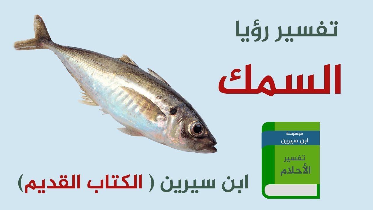 تفسير رؤية القريدس في المنام موسوعة Fish Food