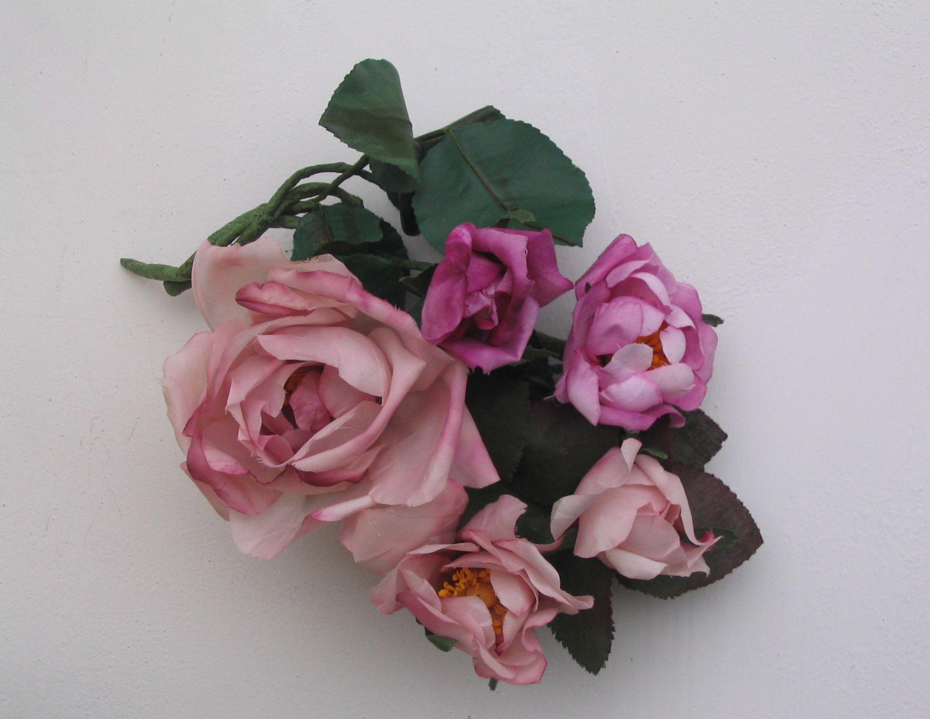 rose di seta