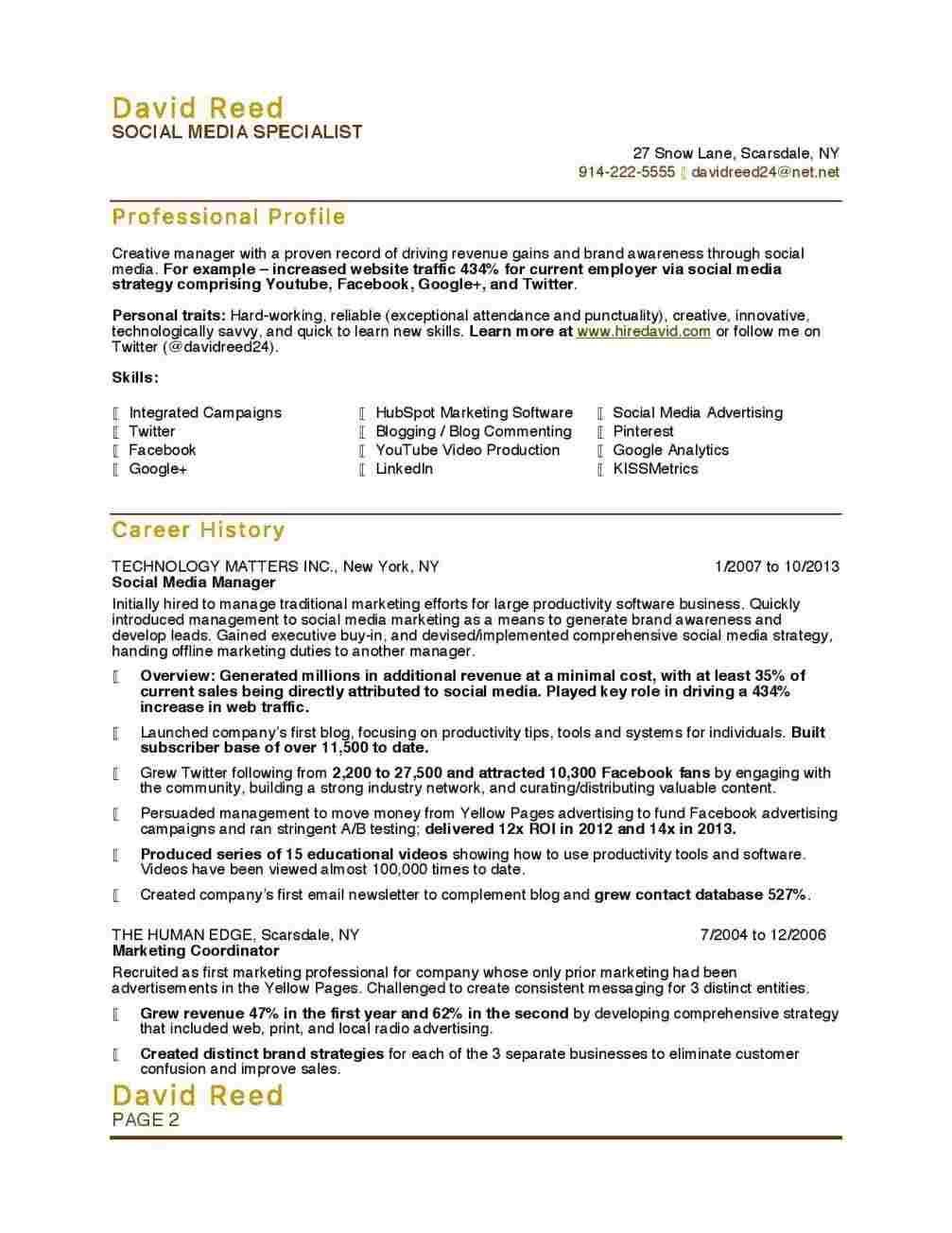 Resume Examples Youtube Marketing resume, Resume skills