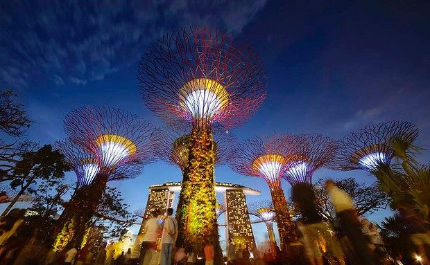 Garden By The Bay Night singapore's gardensthe bay feature massive supertrees that