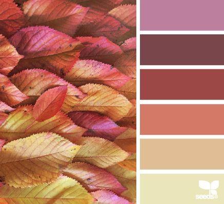 color season (design seeds) Farbtabellen Pinterest - farbe puderrosa kombinieren wohnen