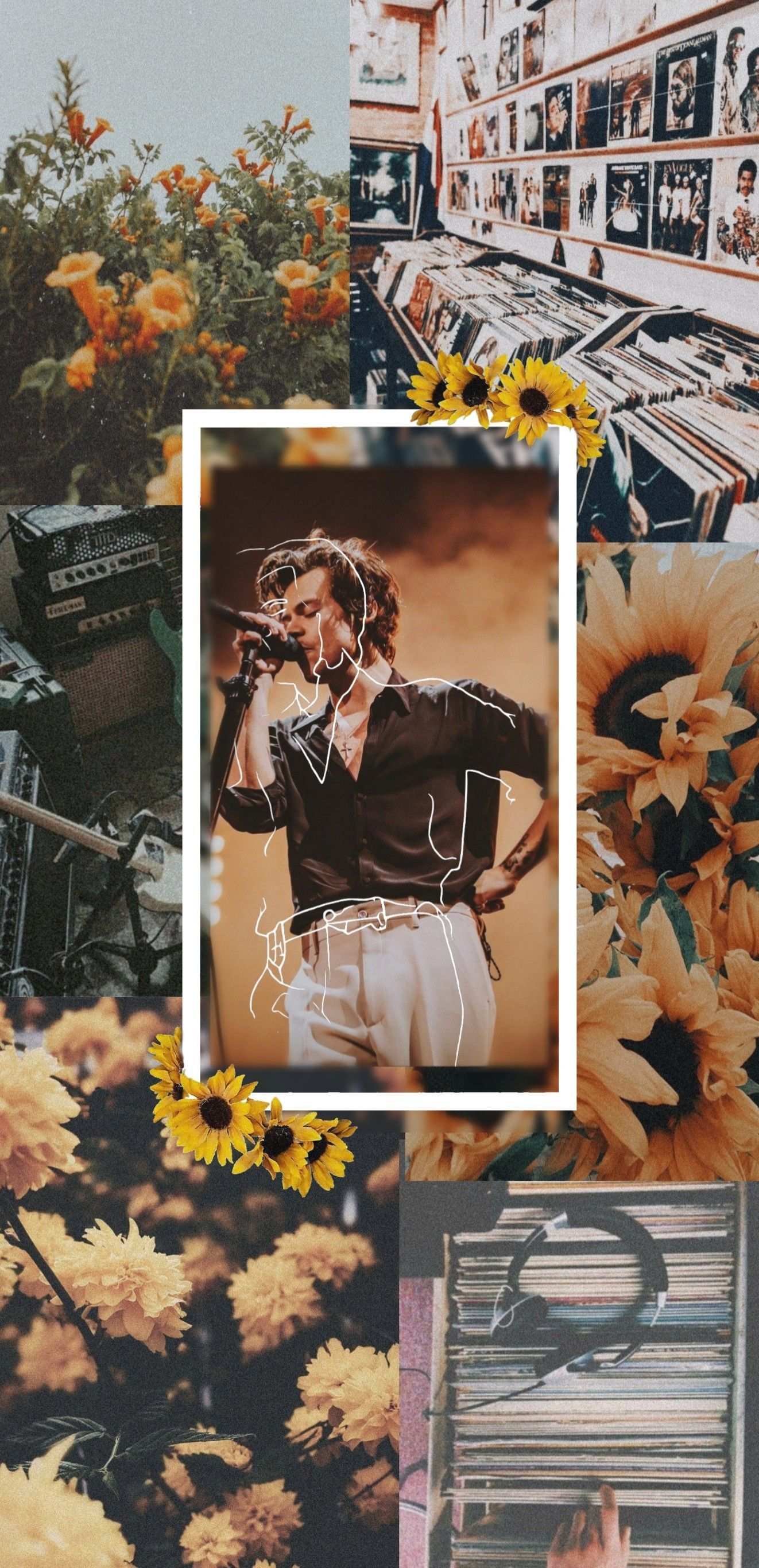 Harry Styles Wallpaper Harrystyles In 2020 Harry Styles Wallpaper Harry Styles Wallpaper Iphone Harry Styles Photos