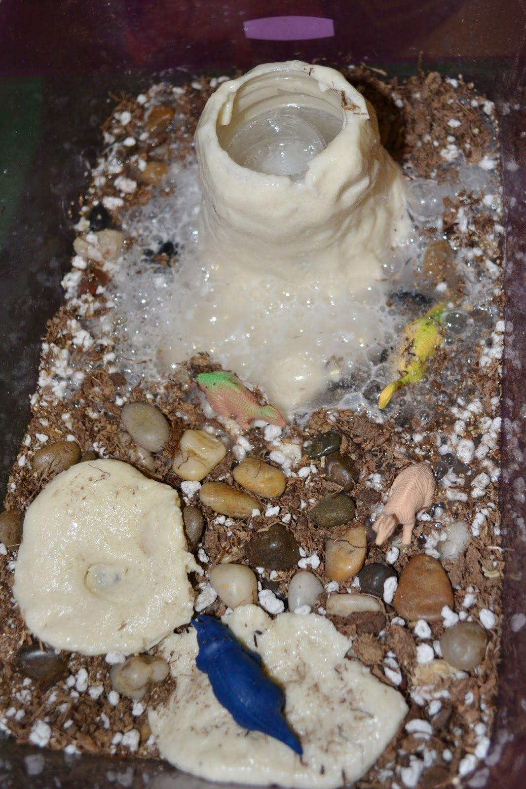 Montessori Dinosaur Activities Science
