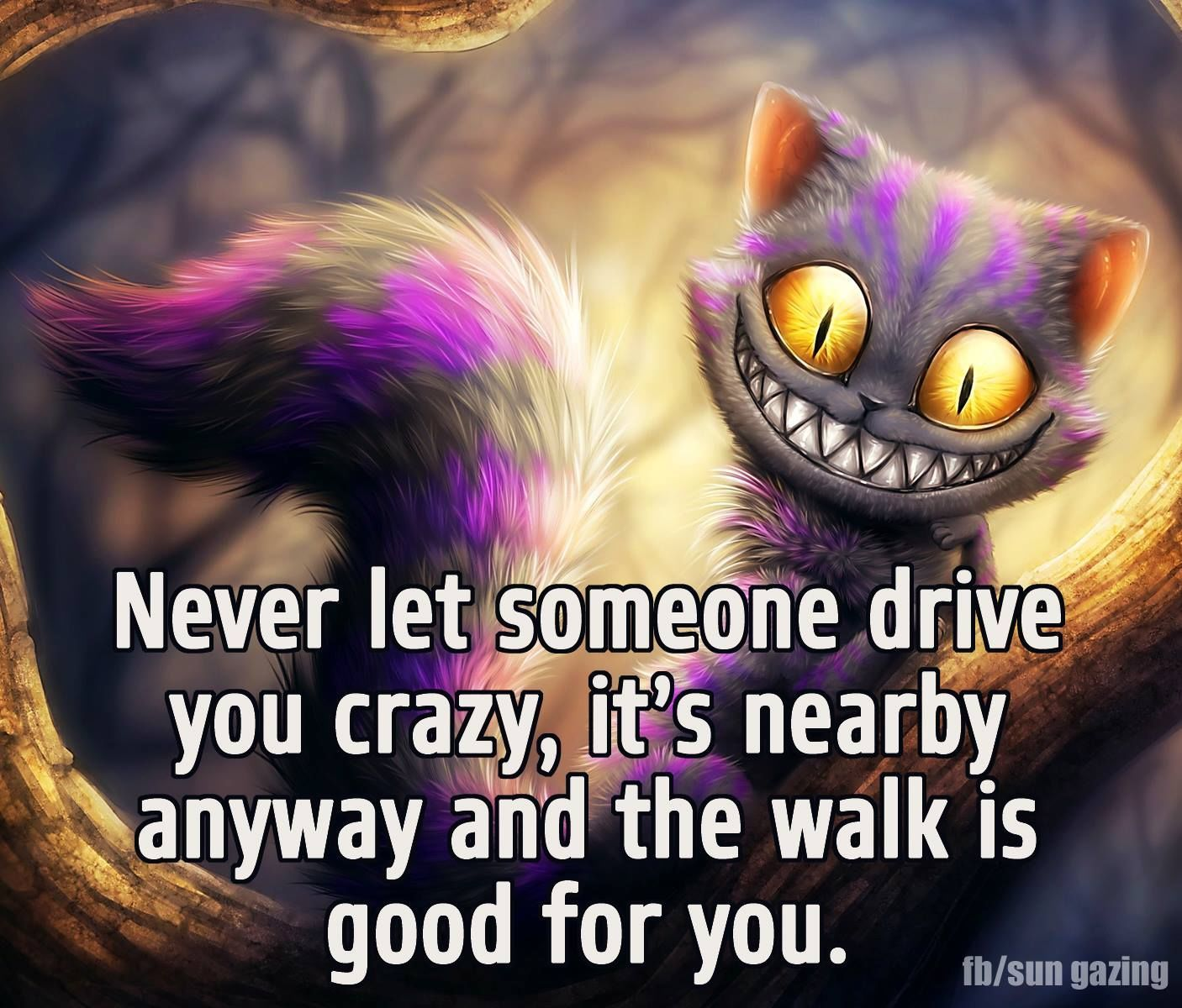 Never Let Someone Drive You Crazy Let It Be Laughing Quotes Crazy Jokes