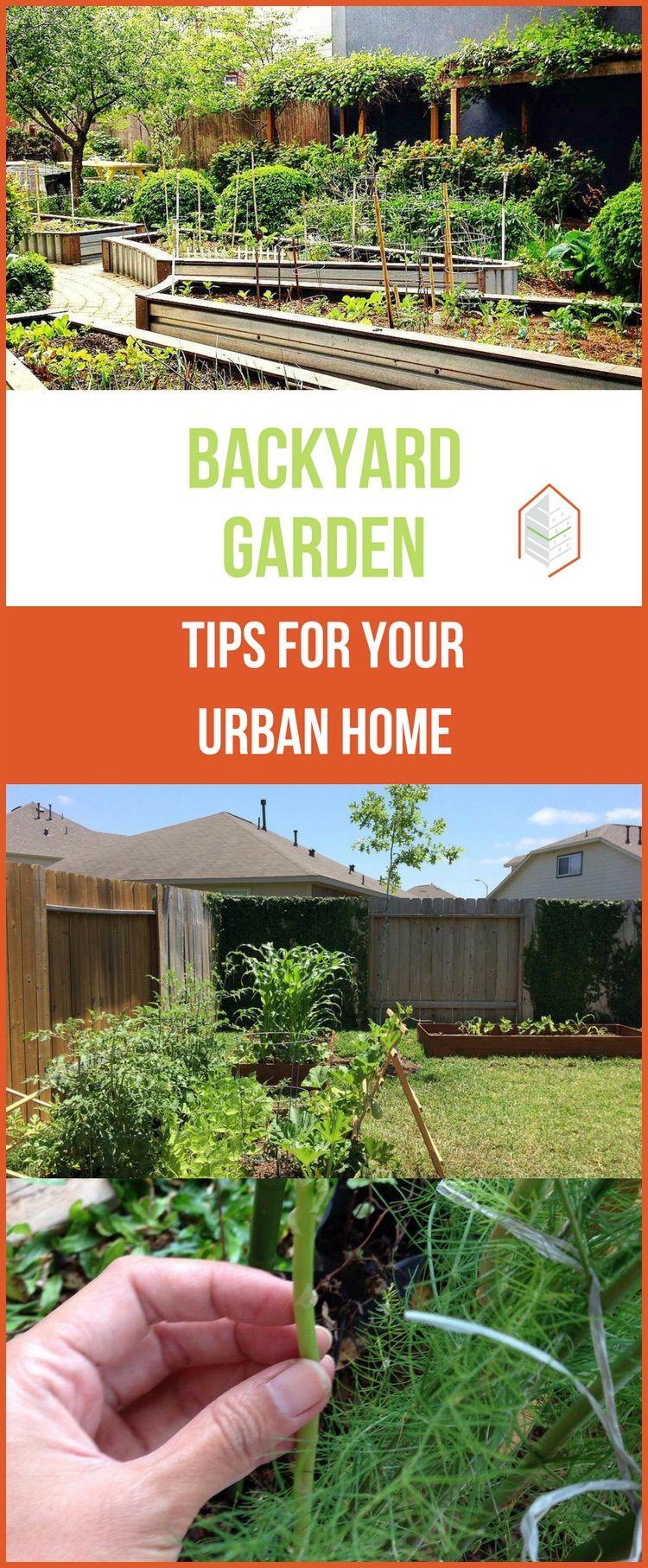 Starting A Backyard Garden: Must Know Tips