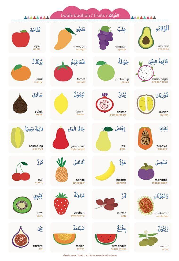 Kebun Binatang Bahasa Arabnya Apa