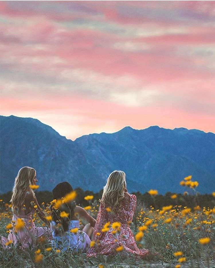 The desert out here in Southern California is in full bloom. I am sad I haven't gotten out to see it in person yet…but this photo by @stephbetravel and @emiliomag is the perfect invitation. #california #liveauthentic #livefolk