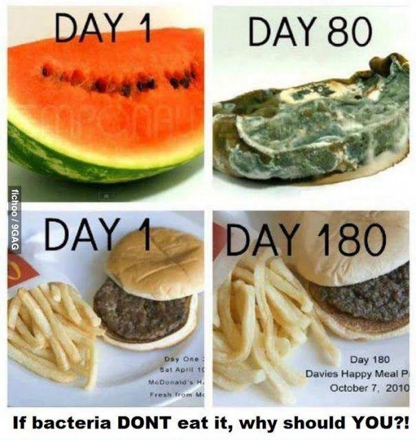 Waarom bederft een McDonalds hamburger niet?