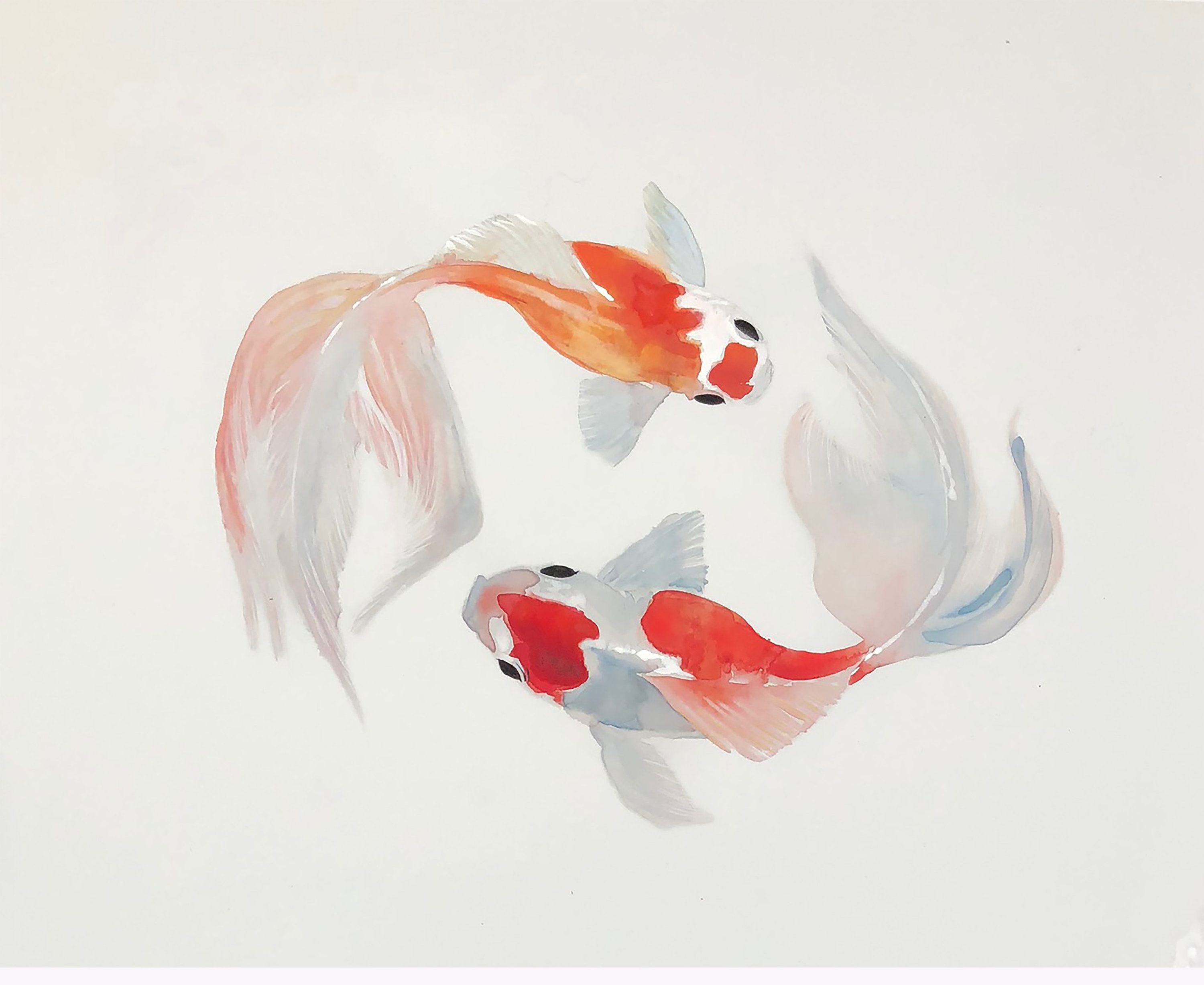 Watercolor Goldfish Print Gold And White Painting Sumi Art Cute