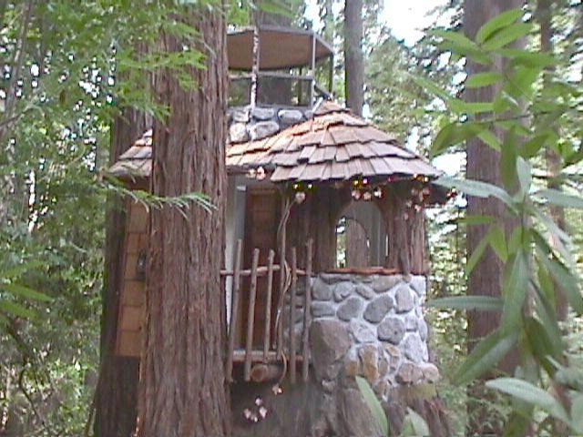 built on the stump of a 1 200 year old redwood tree houses rh pinterest com