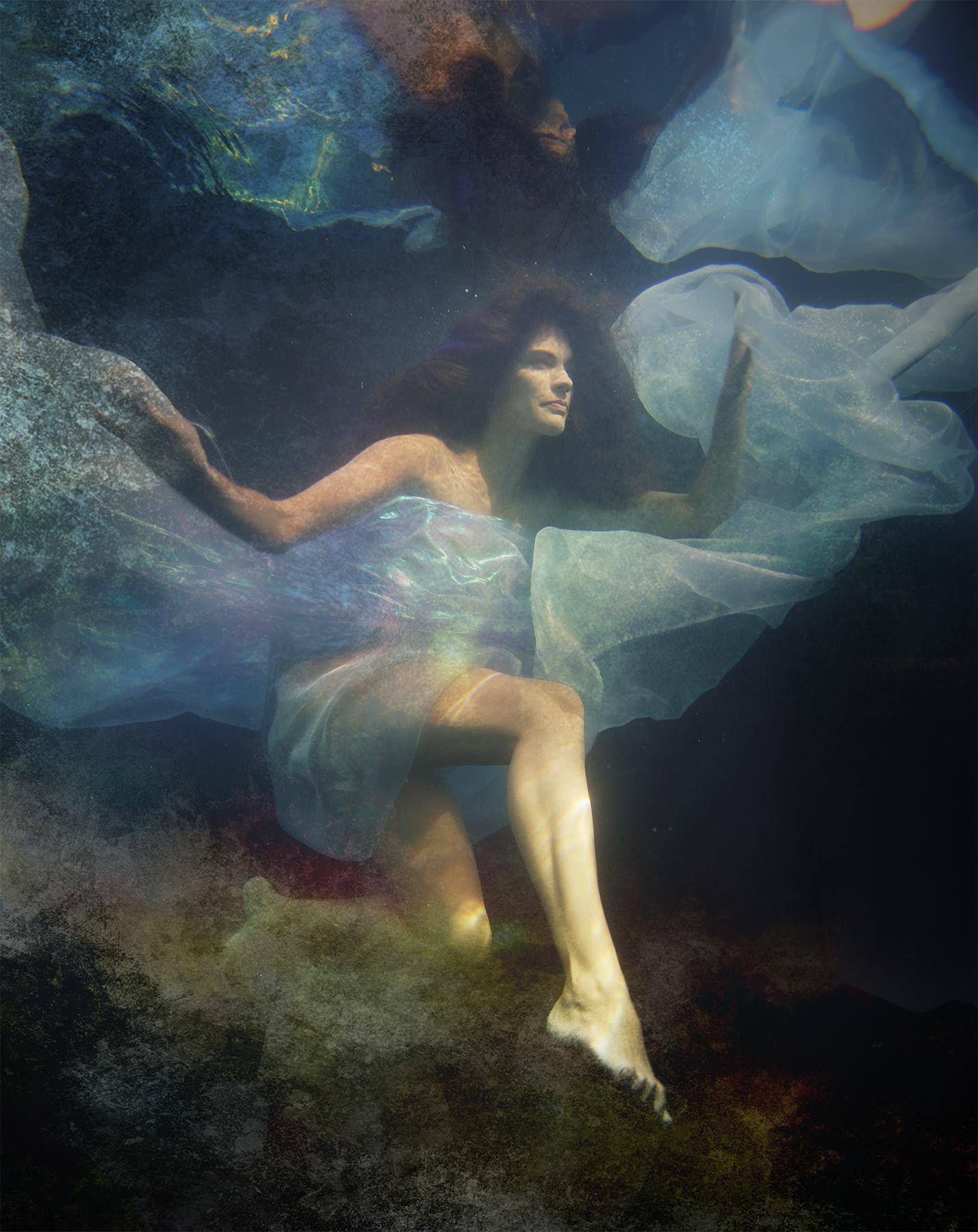 Ethereal Underwater Photographs Capture Frozen Moments in