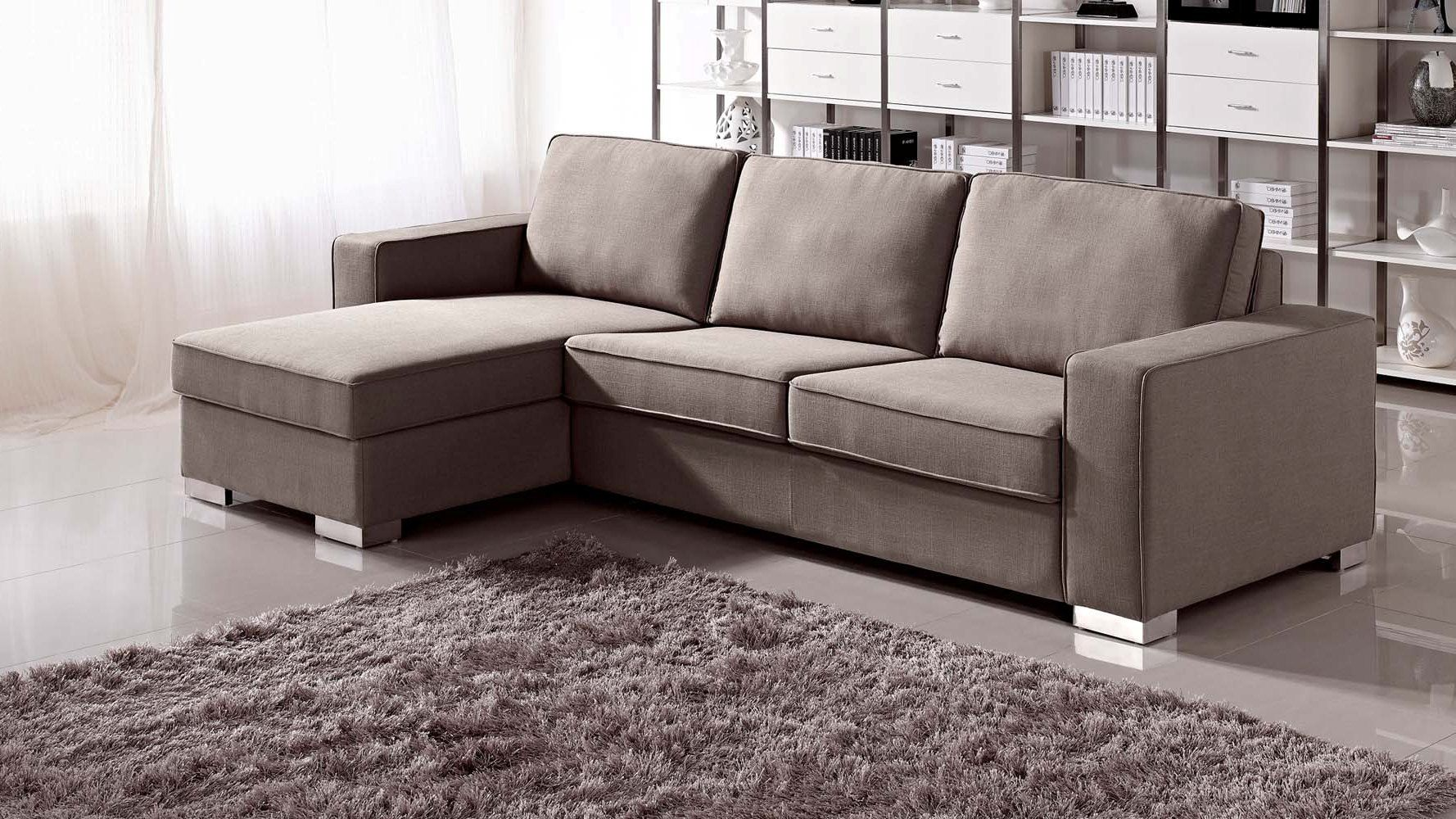 Modern Simple Sectional Sofa Sleeper With Storage And Purple Cushions Plus  Broken White Rug As Well As Small Sleeper Sofa And Chesterfield Sofa, ...