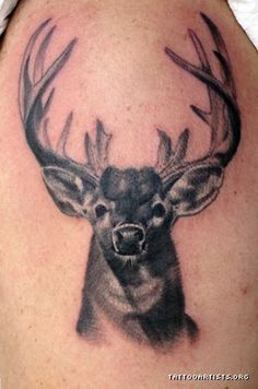 deer buck tattoos google search pinteres. Black Bedroom Furniture Sets. Home Design Ideas