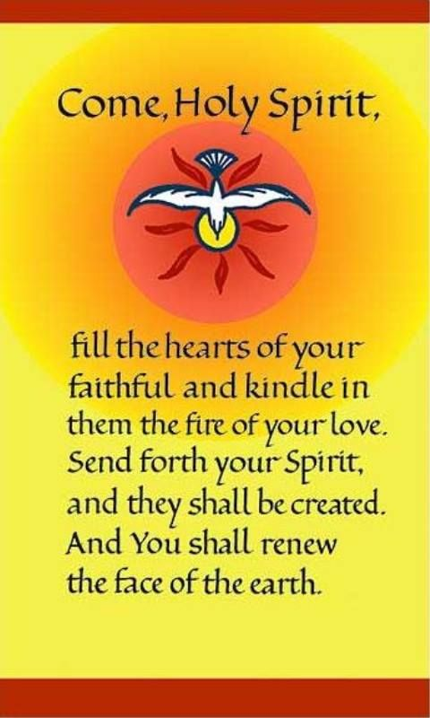 Come Holy Spirit fill the hearts of your faithful and kindle them the fire of your love. Send forth your Spirit and they shall be created and YOU shall renew the face of the earth. -Amen