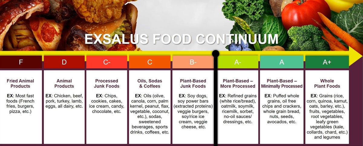 Watch The Exsalus Food Continuum Cns600 Plant Based Nutrition