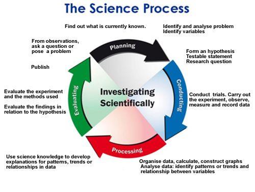 science skills - Google Search | Science Processes Skills ...