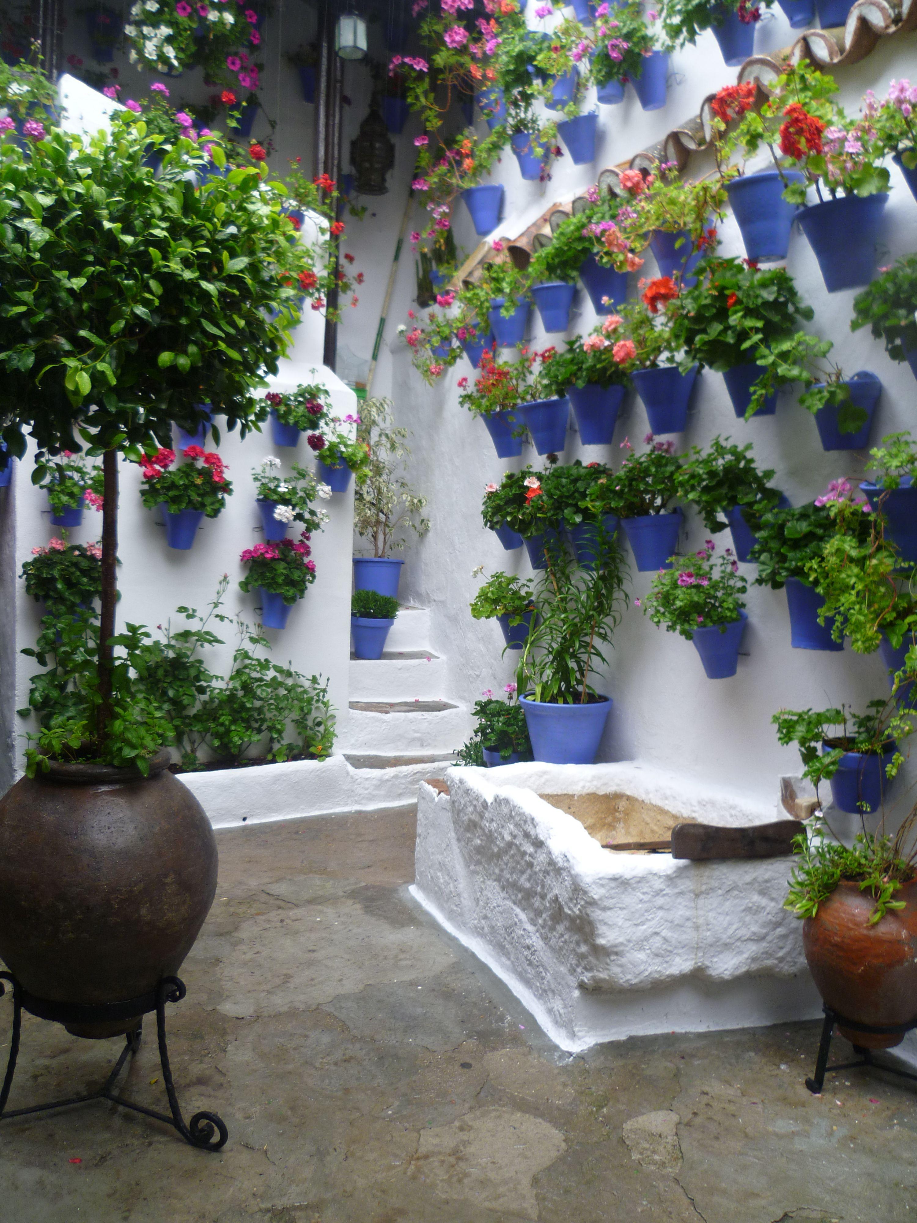 Los patios cordobeses patios andaluces espa a - Fuentes de patio ...