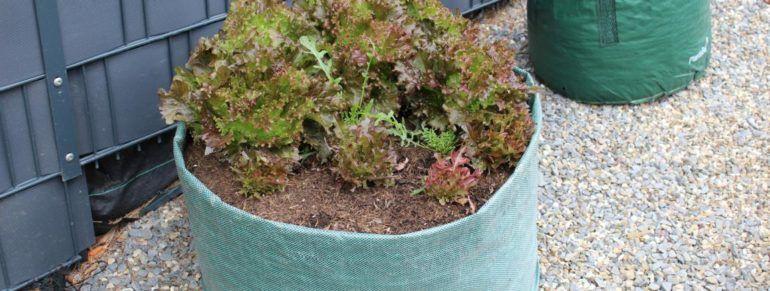 DIY: Ein günstiges Hochbeet für den Garten #kleinekräutergärten