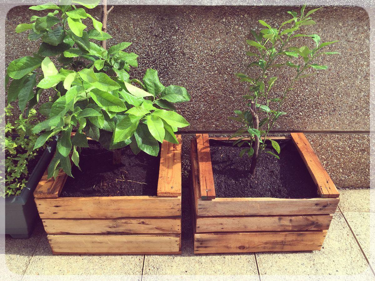 Resultado de imagen de maceteros de madera originales - Maceteros de madera ...