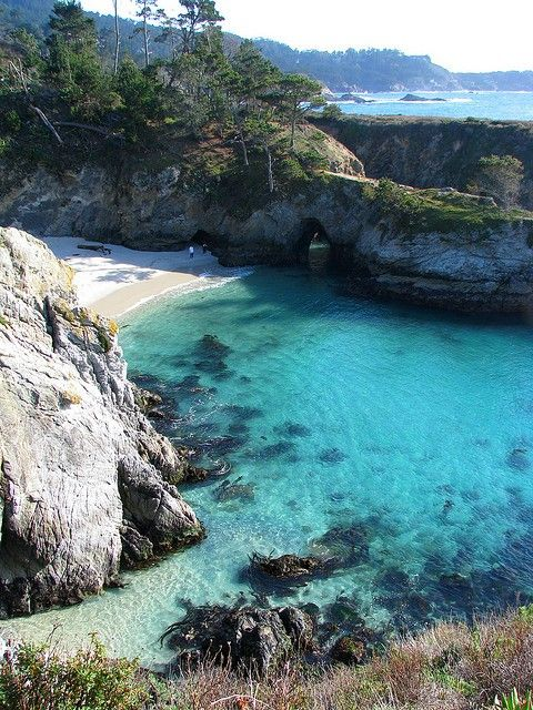 Point Lobos State Park, Carmel. Far and away one of the best day hikes in California. Incredible rocky coastal scenery, secluded beaches you can hike down to, and an old whaling station museum.