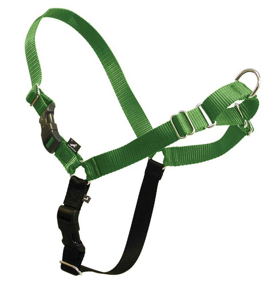 Premier Eco Easy Walk Harness And Leash Special Dog Product