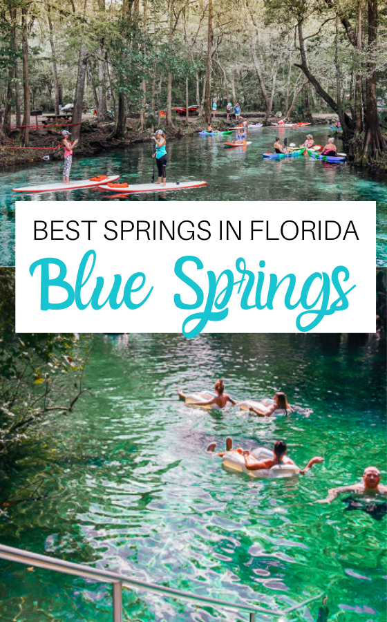 Blue Springs State Park Florida Tubing Our Best Tips Blue Springs State Park Natural Springs In Florida Florida State Parks
