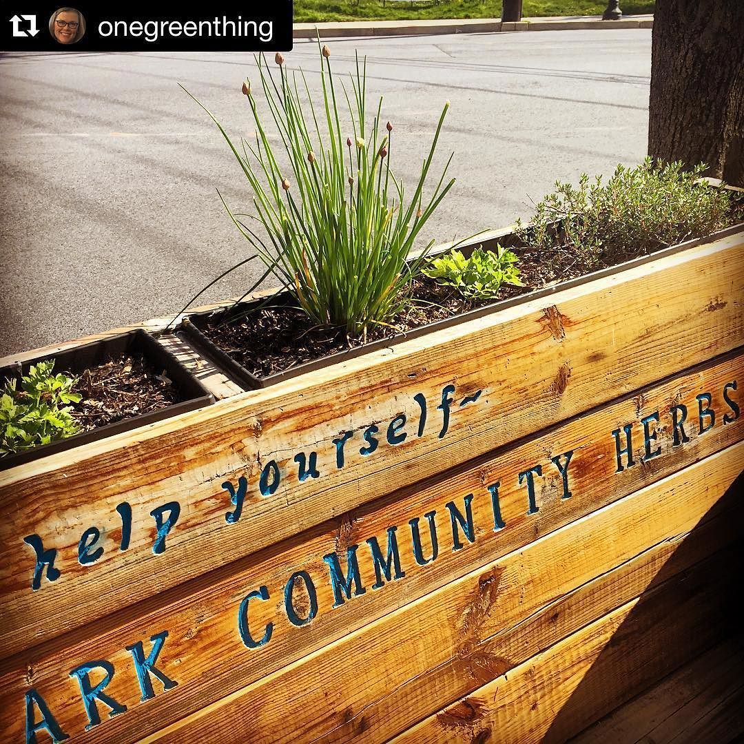 Community herb gardens rock! -  Repost @onegreenthing #SmallBizBigOutcome #community #wellness #health #sustainableliving #share #ecotips #sustainability  #herbs #gardening #herbgarden #instagood #organic #organicfood #design  #green Re-post by Hold With Hope