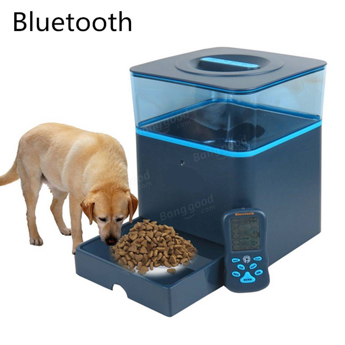 pet smart pf auto camera with feeding us control feeder recorder plug pin remote app