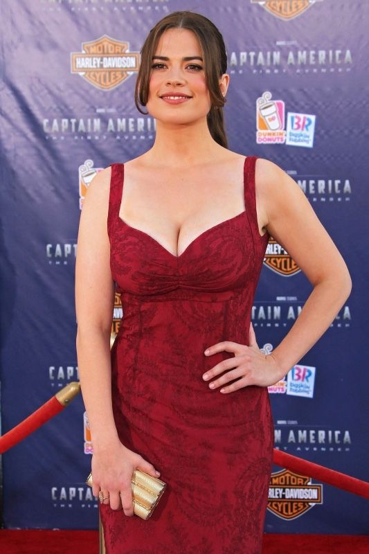 Image result for Hayley Atwell workout