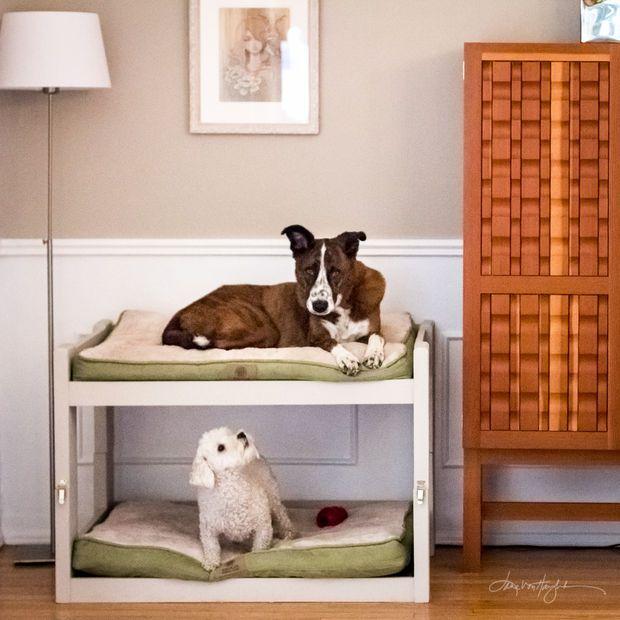 Pallet Dog Basket Painted Or Not Which One Do You Prefer 1001 Pallets Pallet Dog Beds Dog House Diy Diy Dog Stuff