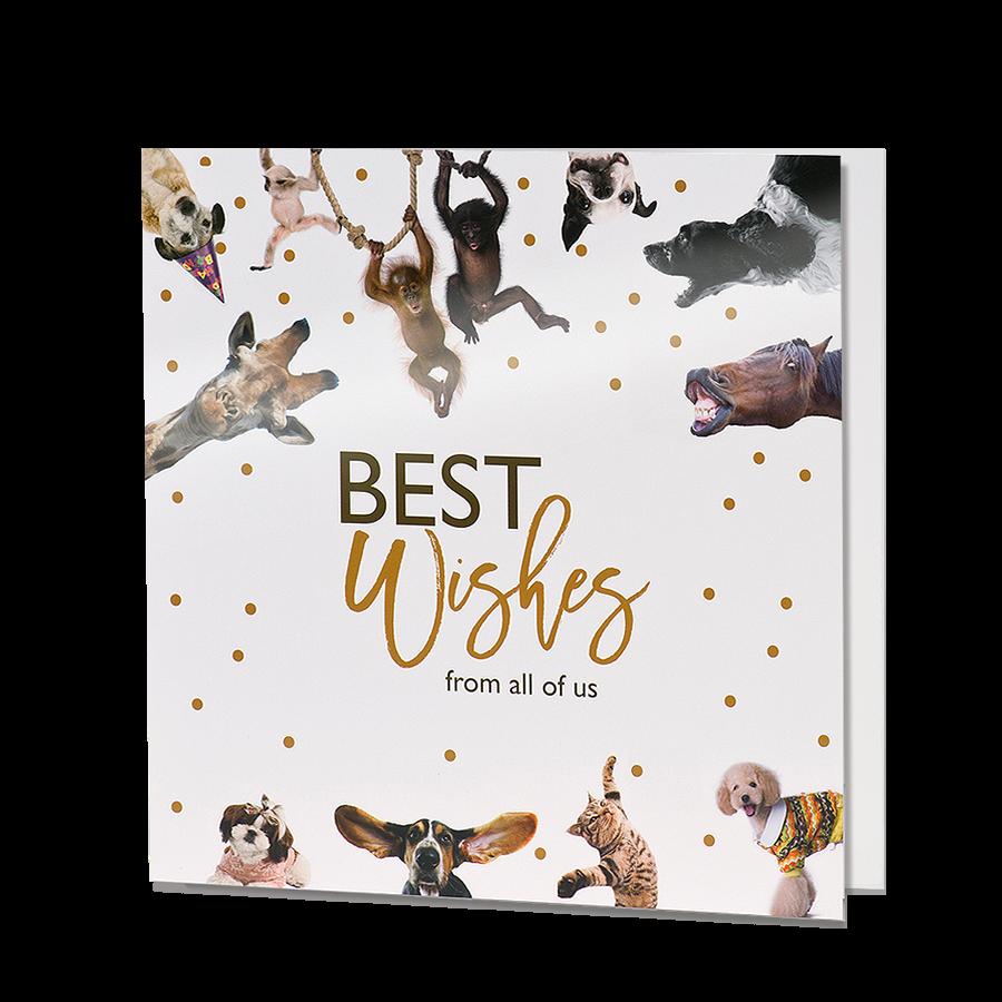 """✭ Weihnachtskarten """"Tiere"""" ✭  Top-Kartenlieferant.de"""