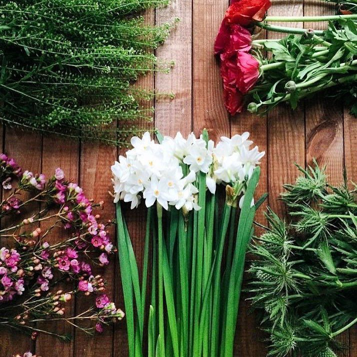 fabulous vancouver florist WWW.FLOWERLUXURY.COM #flowerluxury #vancouver #freshflowers #floweroftheday #instagood #nature by @flower_luxury  #vancouverflorist #vancouverflorist #vancouverwedding #vancouverweddingdosanddonts