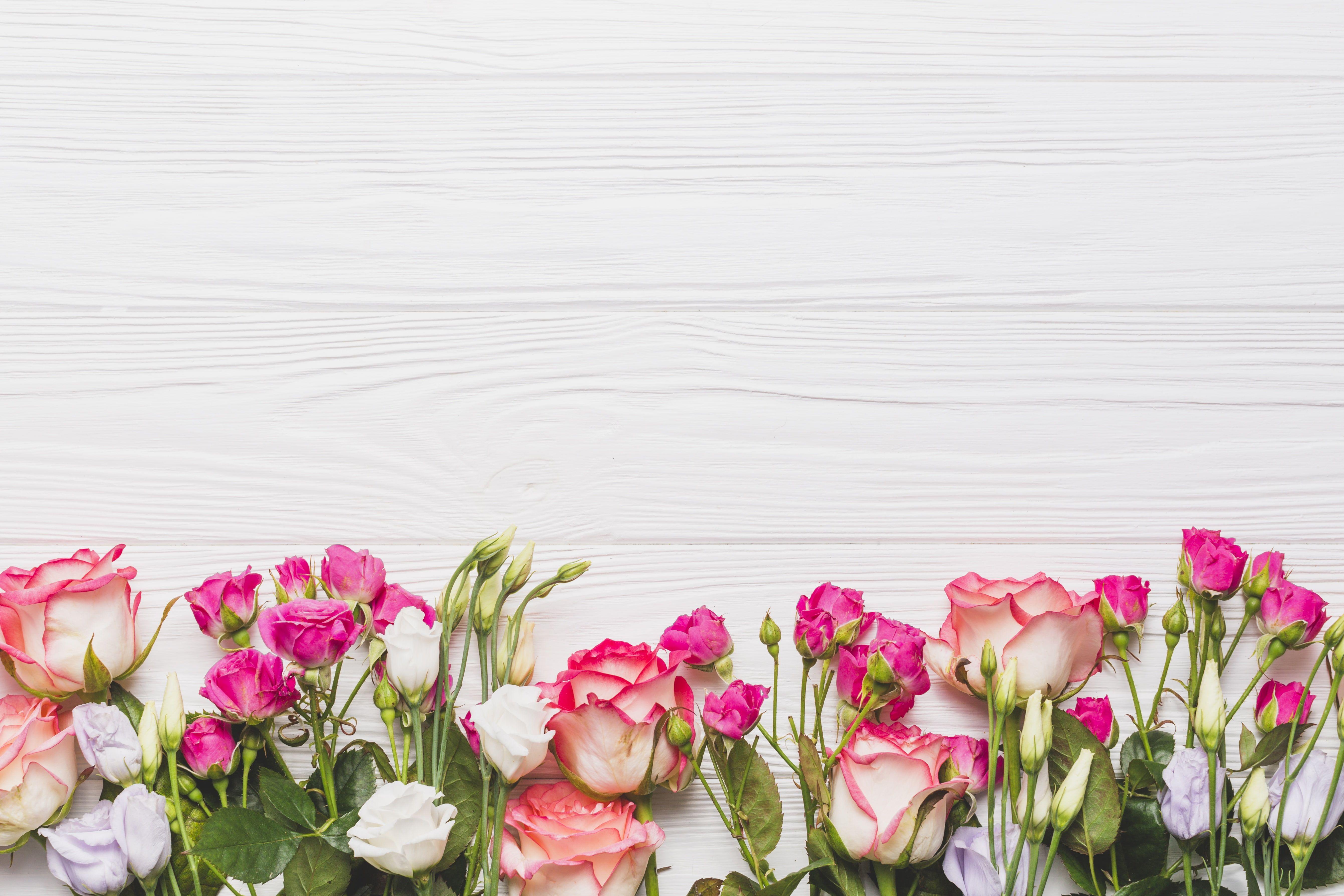 Flowers Background Roses Eustoma 5k Wallpaper Hdwallpaper Desktop In 2020 Flower Desktop Wallpaper Flower Background Wallpaper Flower Backgrounds