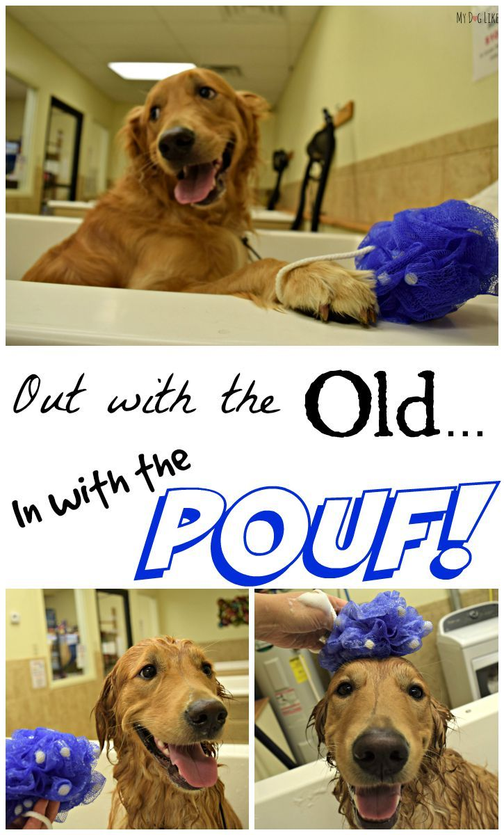 Pouf, It's Magic Absorbine WoofPouf Review (With images